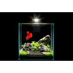 Аквариумный набор Nano Set 10 литров для мелких видов рыб, креветок и др. - NaVolyni.com, Фото 3