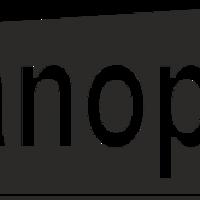 Нанопол