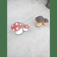 гриби декоративні