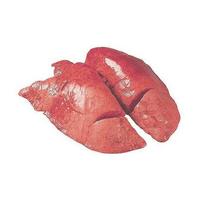 Лівер (легені+серце) Телятина