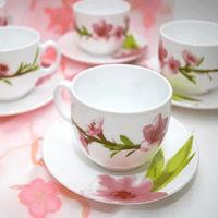 Чайный сервиз LUMINARC WATER COLOR E4904