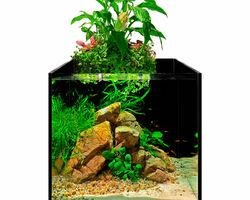Аквариумный набор aFARM AQUAPONIC SET 13 л с фермой для выращивания растений