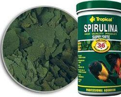 Корм Tropical Spirulina Super Forte 36 % хлопья 12 г
