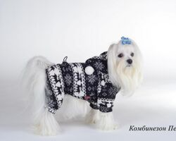 Pet Fashion Комбинезон Пегас XXS