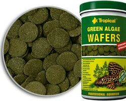 Корм Tropical Green Algae Wafers 75 мл