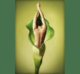 Обгортання водорослями