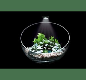Wabi Set - декоративный аквариумный набор