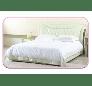 Ліжко Вікторія