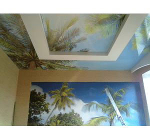 Натяжні настінні панорами