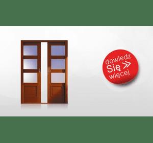 Двері POL-SKONE