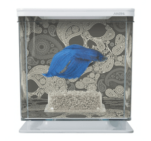 Акваріум Tetra Betta Kit Skull Kit 2л білий