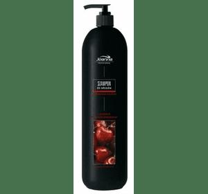 Шампунь для окрашенных волос с UV фильтром, 1000 мл