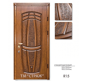 Двері Страж модель R15