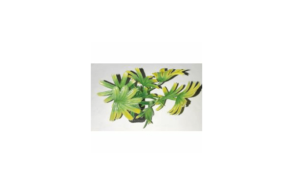 Пластиковое растение для аквариума 3122 - NaVolyni.com