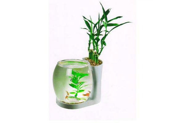 Resun Nature World NW-03 - аквариум на 3 литра - NaVolyni.com