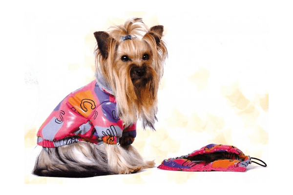 Демисезонная куртка из болоньи Pet Fashion Бетти - NaVolyni.com