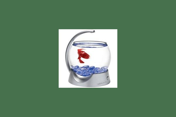 Tetra Betta Bowl 1.8 л - аквариум для петушка, 193949 - NaVolyni.com