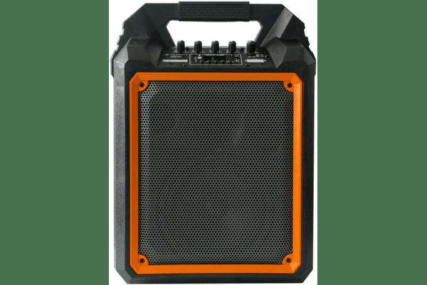 CLARITY MAX6 портативна активна акустична система на акумуляторі - NaVolyni.com