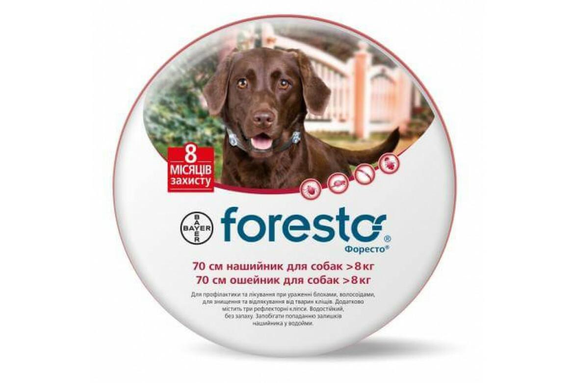 Косметика noga для собак купить заказать продукцию avon